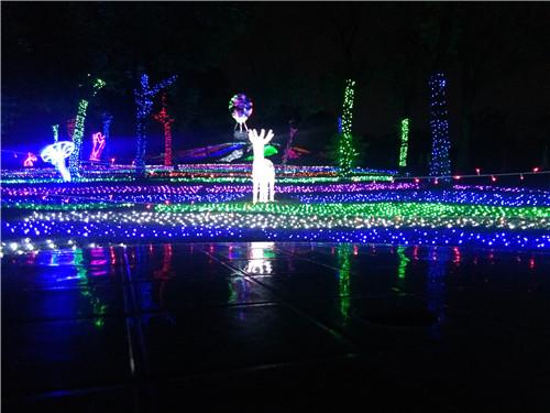 松湖生态园